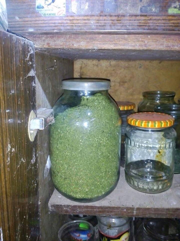 borcan marihuana