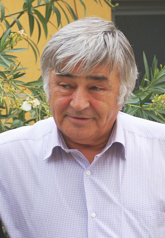 Dimitrie Muscă