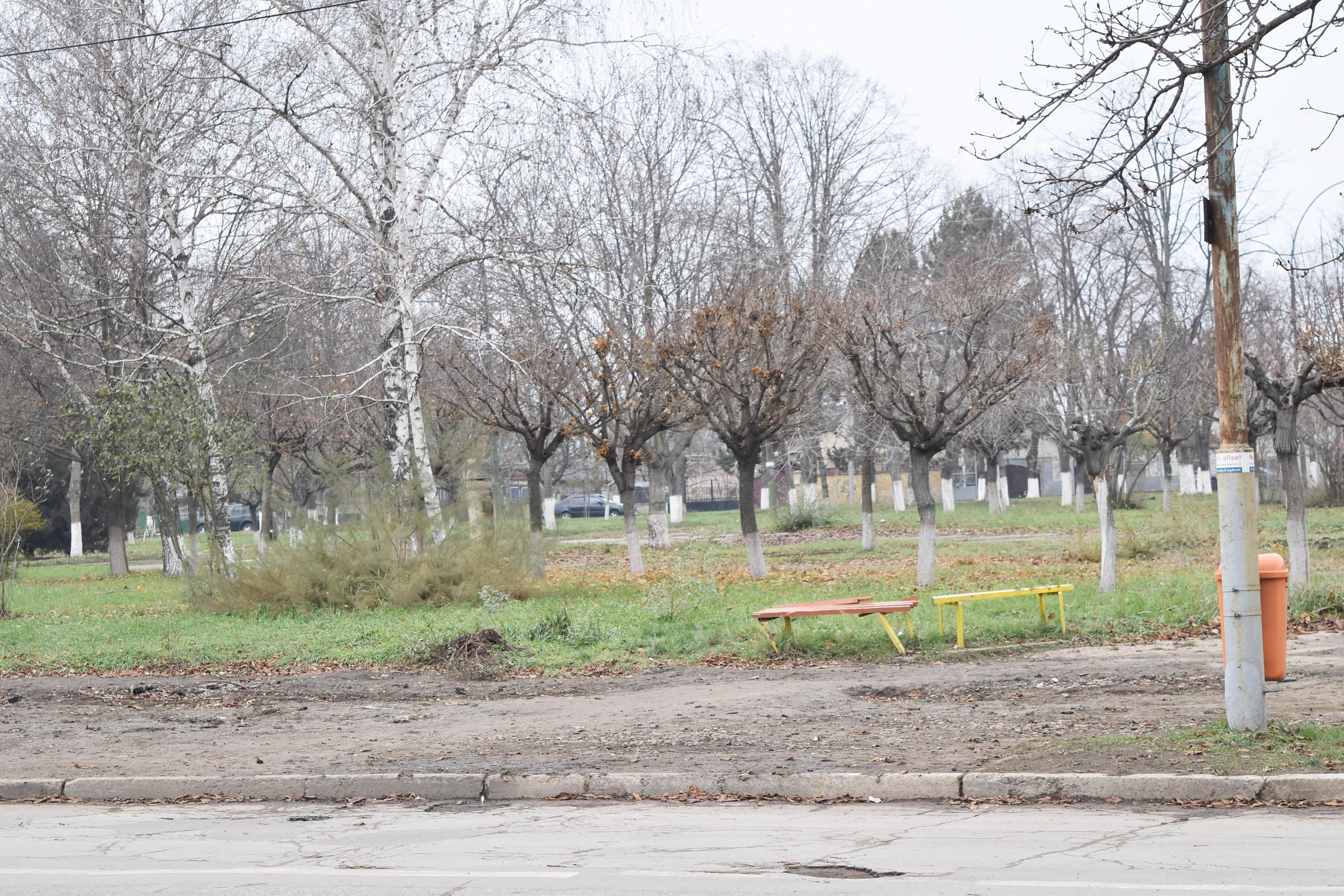 Terenul unde va fi construit monumentul